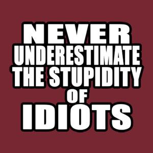 stupid_idiots_big mru mihai razvan ungureanu